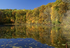 Livingston Land Conservancy Featured Image