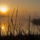 Michigan Nature Association Featured Image
